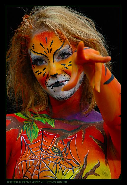 Wildcat - Fotos von Marcus Locher