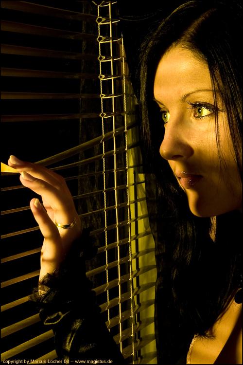 Through the Window - By Marcus Locher