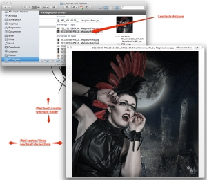 Quick Look - Picture Viewer - Mac OS
